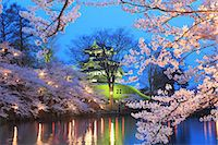 Yozakura Takada, Niigata Prefecture, Japan Stock Photo - Premium Rights-Managednull, Code: 859-06380299