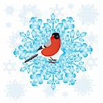 Bullfinch sitting on an abstract snowflake. Illustration on white background. Stock Photo - Royalty-Free, Artist: guarding                      , Code: 400-06384626