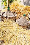 Autumn harvest demijohn wicker with bales of hay
