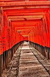 Famous shinto shrine of Fushimi Inari Taisha near Kyoto includes around 1300 orange torii gates, Japan Stock Photo - Royalty-Free, Artist: Fyletto                       , Code: 400-06388918