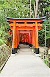 Famous shinto shrine of Fushimi Inari Taisha near Kyoto includes around 1300 orange torii gates, Japan Stock Photo - Royalty-Free, Artist: Fyletto                       , Code: 400-06388922