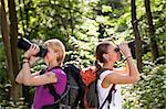 young people trekking among trees and looking at birds with binoculars. Horizontal shape, side view, waist up Stock Photo - Royalty-Free, Artist: diego_cervo                   , Code: 400-06396995