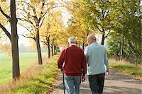 Senior Men Walking on Tree-lined Path in Autumn, Lampertheim, Hesse, Germany Stock Photo - Premium Royalty-Freenull, Code: 600-06397471
