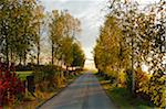 Country Road in Autumn, near Villingen-Schwenningen, Baden-Wurttemberg, Germany Stock Photo - Premium Rights-Managed, Artist: Jochen Schlenker, Code: 700-06397546