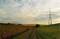 Country Road Running Between Farmland and Power Line, near Villingen-Schwenningen, Baden-Wurttemberg, Germany Stock Photo - Premium Rights-Managednull, Code: 700-06397549