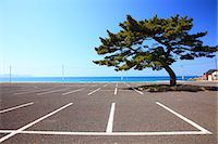 scenic and spring (season) - Mihama beach, Fukui Prefecture Stock Photo - Premium Royalty-Freenull, Code: 622-06398004