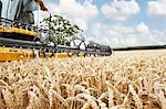 Harvester working in crop field Stock Photo - Premium Royalty-Free, Artist: Michael Mahovlich, Code: 649-06401239