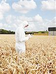 Scientist examining grains in crop field Stock Photo - Premium Royalty-Free, Artist: Robert Harding Images, Code: 649-06401251