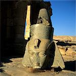Statues of Ramses II, Ramesseum Temple, Luxor Stock Photo - Premium Royalty-Free, Artist: Transtock, Code: 6106-06402321