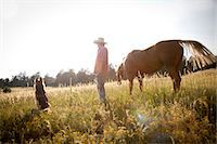 Man in a field with horse and dog Stock Photo - Premium Royalty-Freenull, Code: 614-06402852