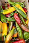 Variety of Hot Peppers at Market, Biarritz, Pyrenees-Atlantiques, Aquitaine, France Stock Photo - Premium Royalty-Free, Artist: photo division, Code: 600-06407719
