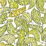 Spring leaves seamless pattern, floral background. Stock Photo - Royalty-Free, Artist: Sylverarts                    , Code: 400-06409499