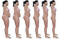 A side view illustration of a obese woman's weight loss progress in a series of six renders. Isolated on a solid white background. Stock Photo - Royalty-Freenull, Code: 400-06415551