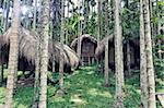 tribal houses in jungle photo Stock Photo - Royalty-Free, Artist: vicnt                         , Code: 400-06424066