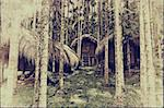 vintage style photo -tribal houses in jungle photo Stock Photo - Royalty-Free, Artist: vicnt                         , Code: 400-06424086