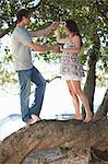 Couple holding each others hands on a tree branch Stock Photo - Premium Royalty-Free, Artist: AWL Images, Code: 649-06432357
