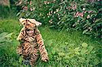 Boy wearing tiger costume outdoors Stock Photo - Premium Royalty-Free, Artist: Minden Pictures, Code: 649-06432489