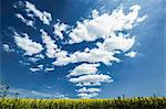 Clouds over grassy rural landscape Stock Photo - Premium Royalty-Free, Artist: Westend61, Code: 649-06433191