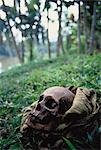 Skull in Bag Papua New Guinea Stock Photo - Premium Rights-Managed, Artist: GreatStock, Code: 873-06440169