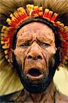 Huli Tribesman Papua, New Guinea