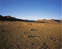 Arid Landscape Karoo National Park Western Cape, South Africa Africa Stock Photo - Premium Rights-Managednull, Code: 873-06440592