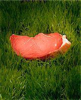 Rump Steak in Grass Stock Photo - Premium Rights-Managednull, Code: 873-06440779