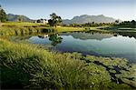 Pond on Fancourt Golf Estate, Garden Route, Western Cape, South Africa Stock Photo - Premium Rights-Managed, Artist: GreatStock, Code: 873-06441035