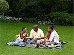 Family Picnic Stock Photo - Premium Rights-Managed, Artist: GreatStock, Code: 873-06441227