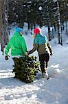 Couple dragging christmas tree through snow Stock Photo - Premium Royalty-Free, Artist: Robert Harding Images, Code: 614-06442709
