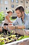 Young man gardening with woman in the background Stock Photo - Premium Royalty-Free, Artist: Blend Images, Code: 698-06444215