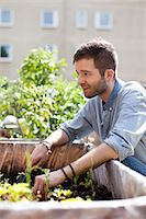 Young man gardening at urban garden Stock Photo - Premium Royalty-Freenull, Code: 698-06444220
