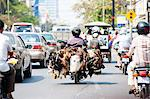 Live chickens and ducks being taken to market on a moped in Phnom Penh, Cambodia, Indochina, Southeast Asia, Asia Stock Photo - Premium Rights-Managed, Artist: Robert Harding Images, Code: 841-06445199