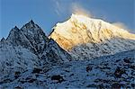 Yak and Langtang Lirung at sunrise, Langtang National Park, Bagmati, Central Region (Madhyamanchal), Nepal, Himalayas, Asia Stock Photo - Premium Rights-Managed, Artist: Robert Harding Images, Code: 841-06446528