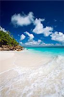 seychelles - Tropical beach, Seychelles, Indian Ocean, Africa Stock Photo - Premium Rights-Managednull, Code: 841-06447308