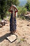 Young Saura tribeswoman winnowing village crop of newly harvested rice by hand, Orissa, India, Asia Stock Photo - Premium Rights-Managed, Artist: Robert Harding Images, Code: 841-06447670
