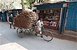 Man wheeling cycle rickshaw laden with dung pats for use as domestic fuel, Hugli village, West Bengal, India, Asia Stock Photo - Premium Rights-Managed, Artist: Robert Harding Images, Code: 841-06447706