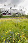 Olympic Stadium surrounded by wild flowers in the Olympic Park, Stratford City, London, England, United Kingdom, Europe Stock Photo - Premium Rights-Managed, Artist: Robert Harding Images, Code: 841-06448009