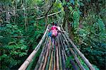 Bamboo bridge in the interior leading to Millennium cave, Island of Espiritu Santo, Vanuatu, South Pacific, Pacific Stock Photo - Premium Rights-Managed, Artist: Robert Harding Images, Code: 841-06448267