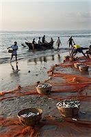 Local fishermen landing catch, Benaulim, Goa, India, Asia Stock Photo - Premium Rights-Managednull, Code: 841-06449371