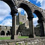 Ruins of Cistercian Jerpoint Abbey, Jerpoint, County Kilkenny, Leinster, Republic of Ireland, Europe Stock Photo - Premium Rights-Managed, Artist: Robert Harding Images, Code: 841-06449473