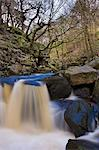 Padley Gorge in the Peak District, Derbyshire, England, United Kingdom, Europe Stock Photo - Premium Rights-Managed, Artist: Robert Harding Images, Code: 841-06449640