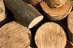 Bunch of hornbeam cut logs as firewood Stock Photo - Royalty-Free, Artist: qiiip                         , Code: 400-06459129