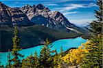 Overview of Peyto Lake as seen from Bow Summit, Banff National Park, Alberta, Canada Stock Photo - Premium Rights-Managed, Artist: R. Ian Lloyd, Code: 700-06465437