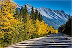 Road Through Forest with View of Mount Rundle in Autumn, Banff National Park, Alberta, Canada Stock Photo - Premium Rights-Managed, Artist: R. Ian Lloyd, Code: 700-06465449
