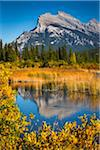 Mount Rundle and Long Grass in Vermilion Lakes, near Banff, Banff National Park, Alberta, Canada Stock Photo - Premium Rights-Managed, Artist: R. Ian Lloyd, Code: 700-06465460