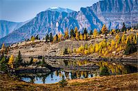 fall trees lake - Rock Isle Lake in Autumn with Mountain Range in Background, Mount Assiniboine Provincial Park, British Columbia, Canada Stock Photo - Premium Rights-Managednull, Code: 700-06465480