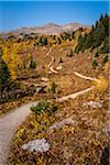 Rock Isle Trail in Autumn, Sunshine Meadows, Mount Assiniboine Provincial Park, British Columbia, Canada Stock Photo - Premium Rights-Managed, Artist: R. Ian Lloyd, Code: 700-06465485