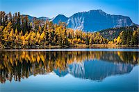 fall trees lake - Larix Lake with Autumn Larch, Rock Isle Trail, Sunshine Meadows, Mount Assiniboine Provincial Park, British Columbia, Canada Stock Photo - Premium Rights-Managednull, Code: 700-06465499