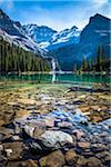 Rocky Shore of Alpine Lake, Lake O'Hara, Yoho National Park, British Columbia, Canada Stock Photo - Premium Rights-Managed, Artist: R. Ian Lloyd, Code: 700-06465514