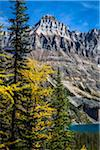 Autumn Larch, Mountain Range and Alpine Lake, Lake O'Hara, Yoho National Park, British Columbia, Canada Stock Photo - Premium Rights-Managed, Artist: R. Ian Lloyd, Code: 700-06465525